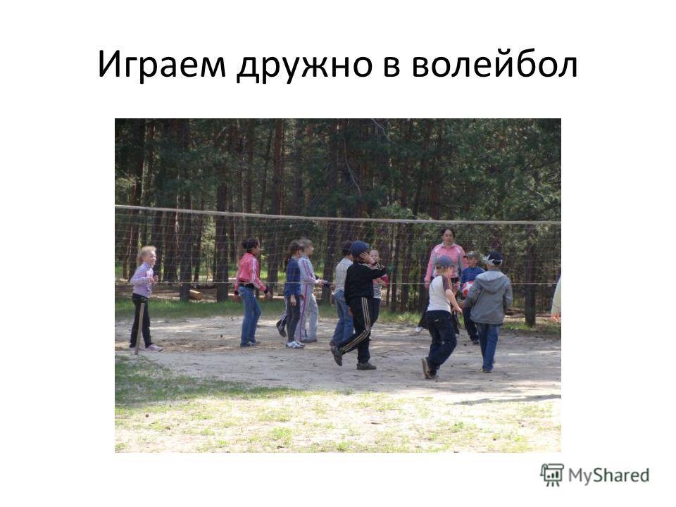 Играем дружно в волейбол