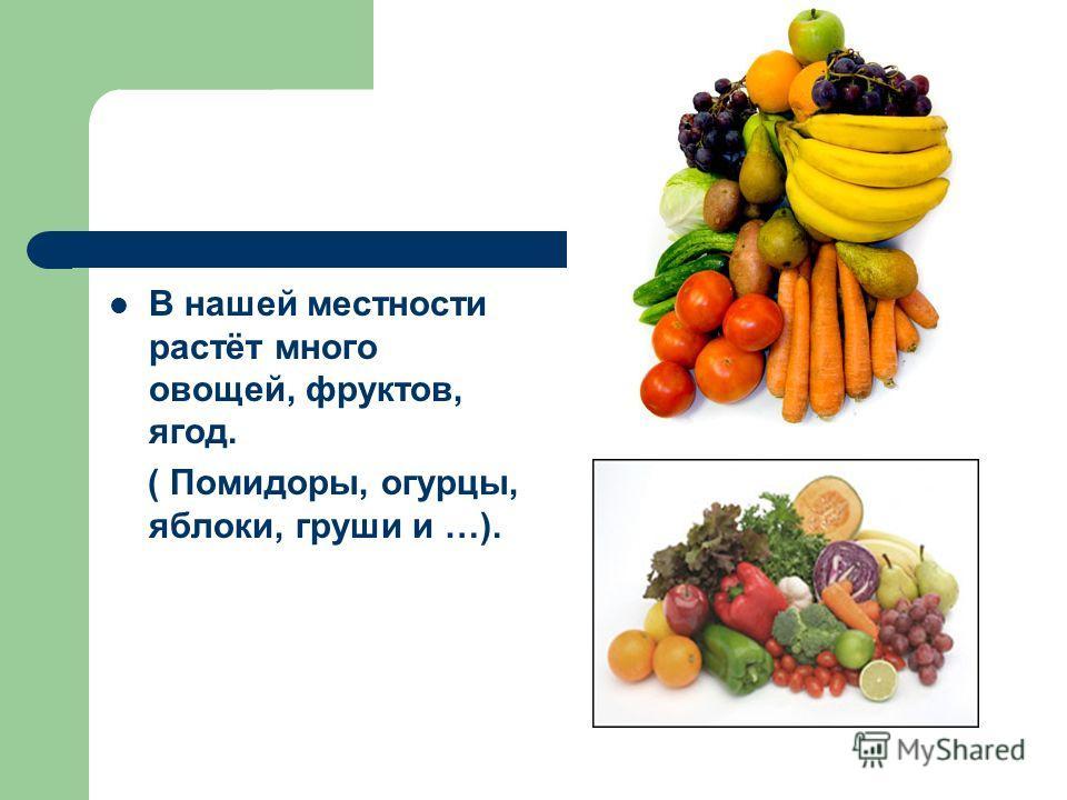 В нашей местности растёт много овощей, фруктов, ягод. ( Помидоры, огурцы, яблоки, груши и …).