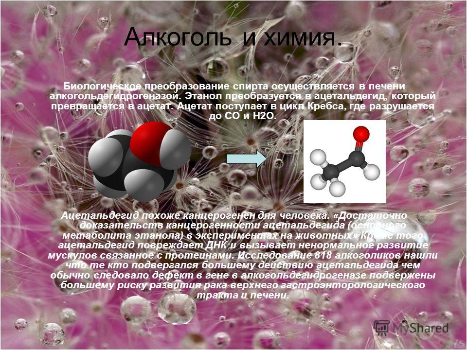 Алкоголь и химия. Биологическое преобразование спирта осуществляется в печени алкогольдегидрогеназой. Этанол преобразуется в ацетальдегид, который превращается в ацетат. Ацетат поступает в цикл Кребса, где разрушается до СО и H2O. Ацетальдегид похоже