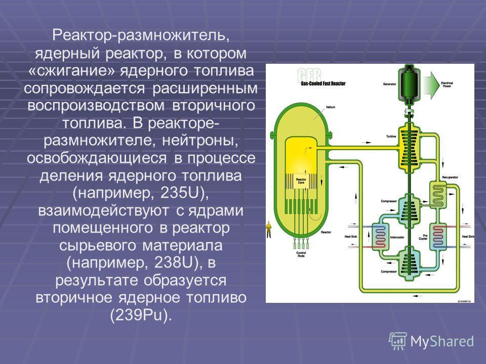 Реактор-размножитель, ядерный реактор, в котором «сжигание» ядерного топлива сопровождается расширенным воспроизводством вторичного топлива. В реакторе- размножителе, нейтроны, освобождающиеся в процессе деления ядерного топлива (например, 235U), вза