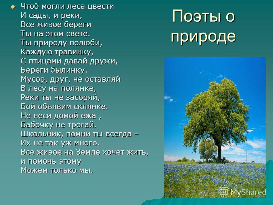 Поэты о природе Чтоб могли леса цвести И сады, и реки, Все живое береги Ты на этом свете. Ты природу полюби, Каждую травинку, С птицами давай дружи, Береги былинку. Мусор, друг, не оставляй В лесу на полянке, Реки ты не засоряй, Бой объявим склянке.