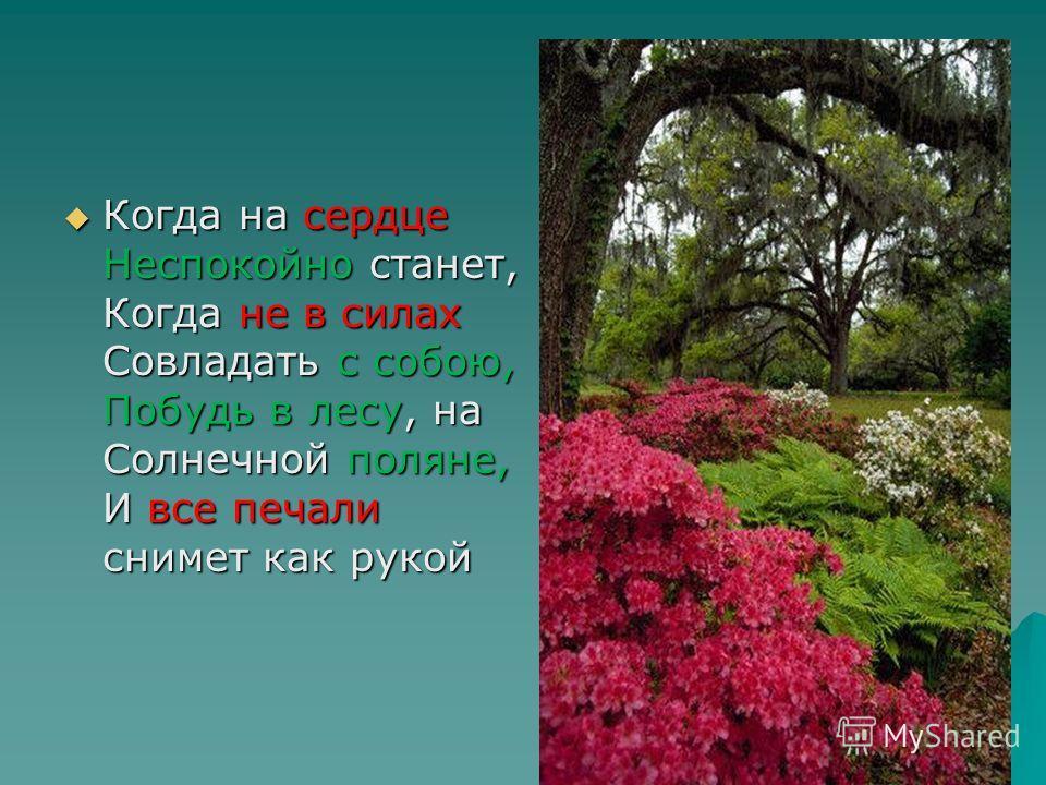 Когда на сердце Неспокойно станет, Когда не в силах Совладать с собою, Побудь в лесу, на Солнечной поляне, И все печали снимет как рукой Когда на сердце Неспокойно станет, Когда не в силах Совладать с собою, Побудь в лесу, на Солнечной поляне, И все