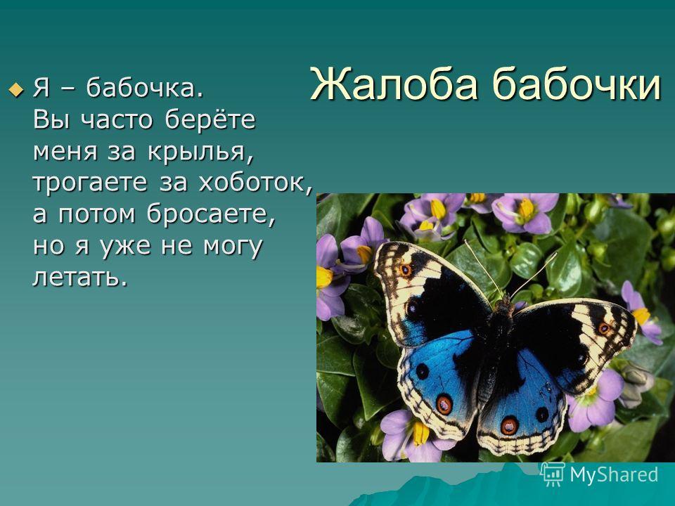 Жалоба бабочки Я – бабочка. Вы часто берёте меня за крылья, трогаете за хоботок, а потом бросаете, но я уже не могу летать. Я – бабочка. Вы часто берёте меня за крылья, трогаете за хоботок, а потом бросаете, но я уже не могу летать.
