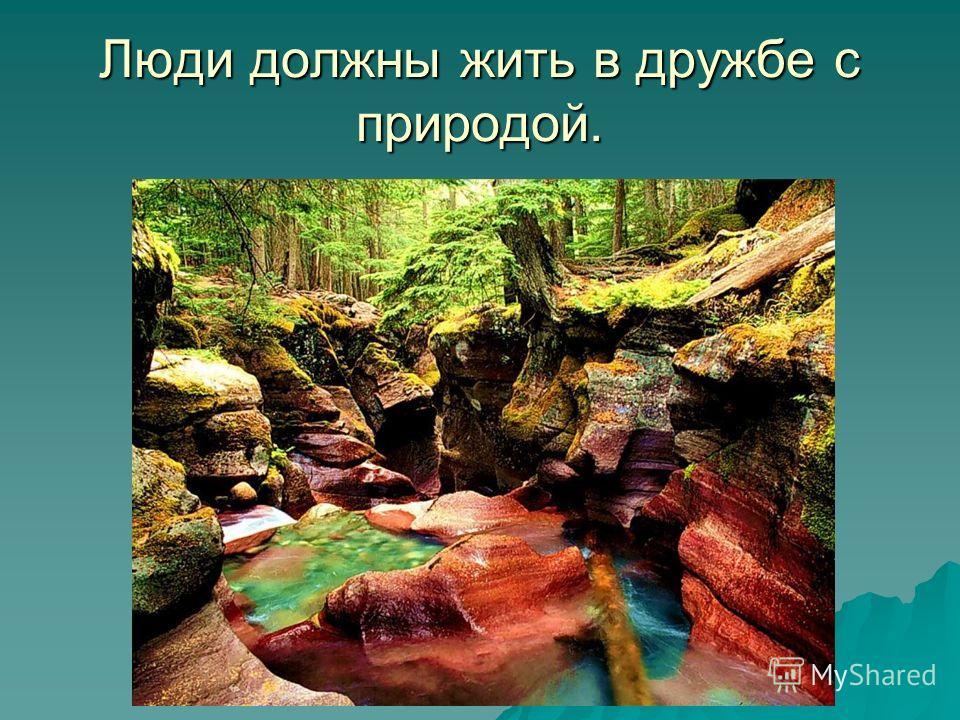 Люди должны жить в дружбе с природой.