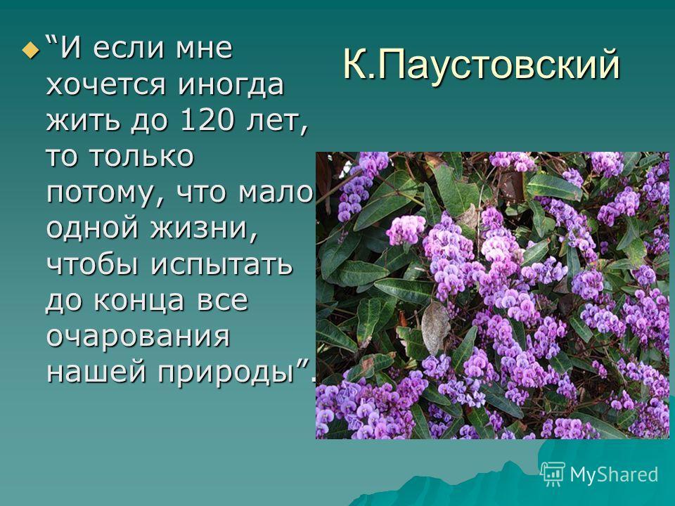 К.Паустовский И если мне хочется иногда жить до 120 лет, то только потому, что мало одной жизни, чтобы испытать до конца все очарования нашей природы. И если мне хочется иногда жить до 120 лет, то только потому, что мало одной жизни, чтобы испытать д