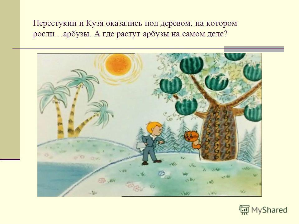 Перестукин и Кузя оказались под деревом, на котором росли…арбузы. А где растут арбузы на самом деле?