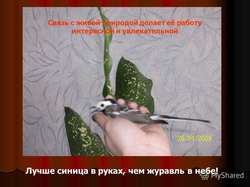 Лучше синица в руках, чем журавль в небе! Связь с живой природой делает её работу интересной и увлекательной