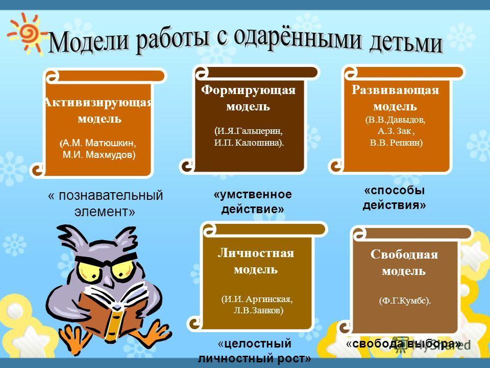 Активизирующая модель ( А.М. Матюшкин, М.И. Махмудов) Формирующая модель ( И.Я.Гальперин, И.П. Калошина). Развивающая модель (В.В.Давыдов, А.З. Зак, В.В. Репкин) Личностная модель (И.И. Аргинская, Л.В.Занков) Свободная модель (Ф.Г.Кумбс). « познавате
