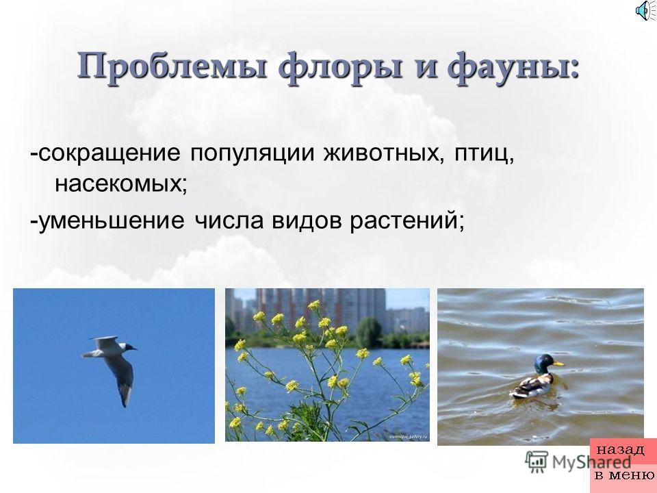 Проблемы флоры и фауны: -сокращение популяции животных, птиц, насекомых; -уменьшение числа видов растений;
