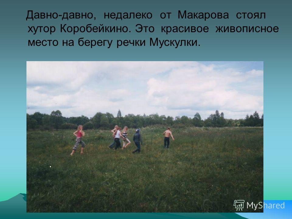 Давно-давно, недалеко от Макарова стоял хутор Коробейкино. Это красивое живописное место на берегу речки Мускулки.