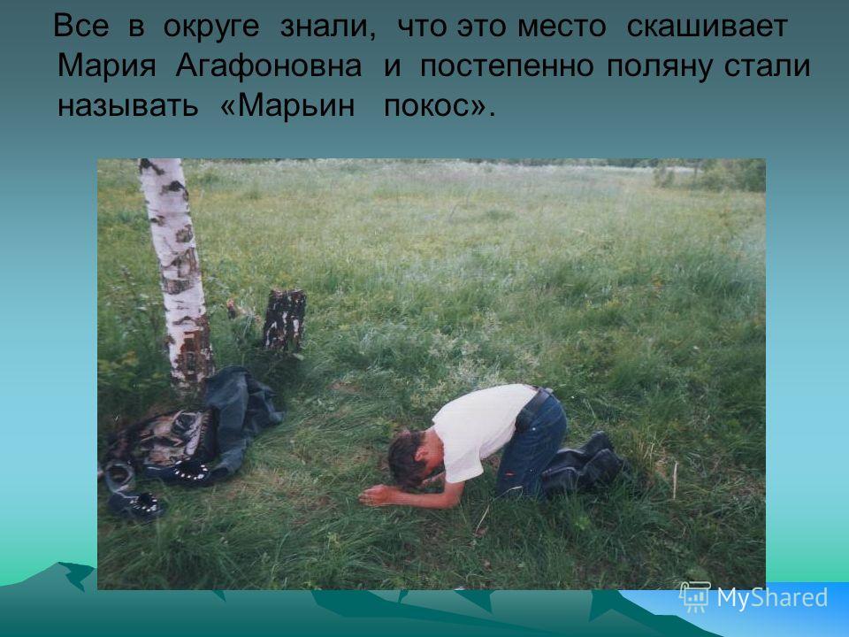 Все в округе знали, что это место скашивает Мария Агафоновна и постепенно поляну стали называть «Марьин покос».