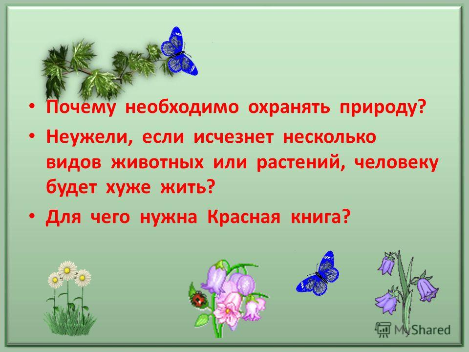 Почему необходимо охранять природу? Неужели, если исчезнет несколько видов животных или растений, человеку будет хуже жить? Для чего нужна Красная книга?