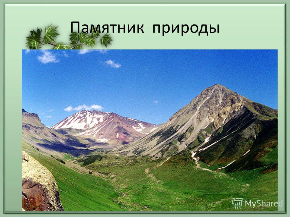Памятник природы