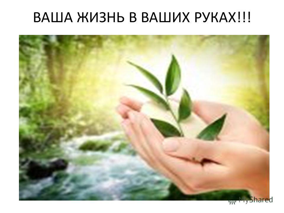 ВАША ЖИЗНЬ В ВАШИХ РУКАХ!!!