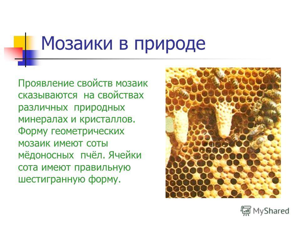 Мозаики в природе Проявление свойств мозаик сказываются на свойствах различных природных минералах и кристаллов. Форму геометрических мозаик имеют соты мёдоносных пчёл. Ячейки сота имеют правильную шестигранную форму.