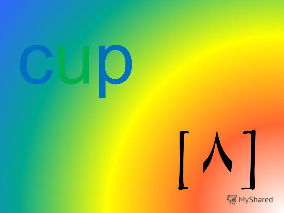 cup[۸]cup[۸]