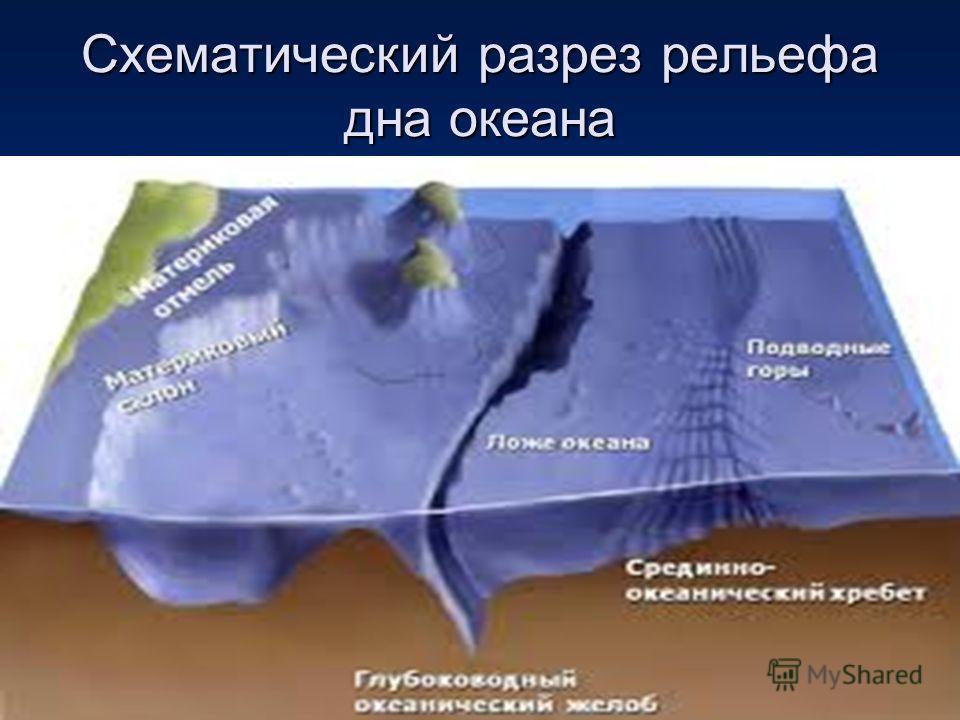 Схематический разрез рельефа дна океана