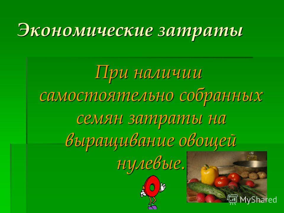 Экономические затраты При наличии самостоятельно собранных семян затраты на выращивание овощей нулевые. При наличии самостоятельно собранных семян затраты на выращивание овощей нулевые.