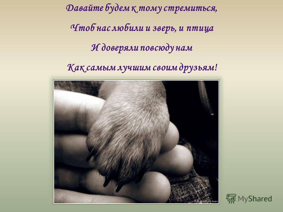 Давайте будем к тому стремиться, Чтоб нас любили и зверь, и птица И доверяли повсюду нам Как самым лучшим своим друзьям!