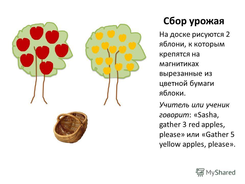 Сбор урожая На доске рисуются 2 яблони, к которым крепятся на магнитиках вырезанные из цветной бумаги яблоки. Учитель или ученик говорит: «Sasha, gather 3 red apples, please» или «Gather 5 yellow apples, please».
