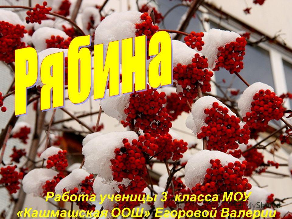 Работа ученицы 3 класса МОУ «Кашмашская ООШ» Егоровой Валерии