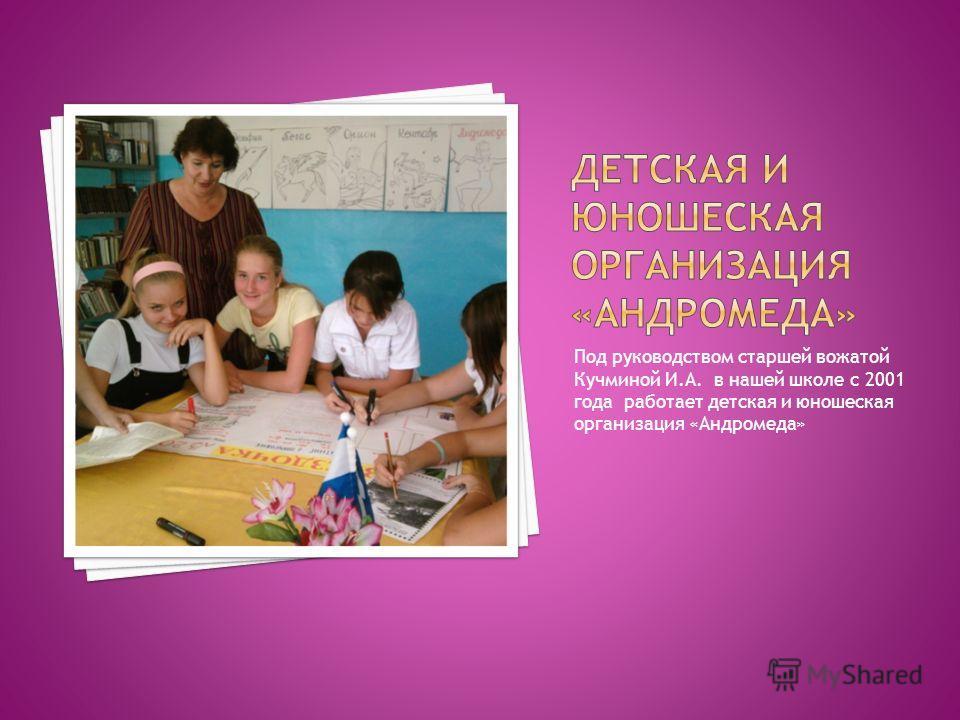 Под руководством старшей вожатой Кучминой И.А. в нашей школе с 2001 года работает детская и юношеская организация «Андромеда»