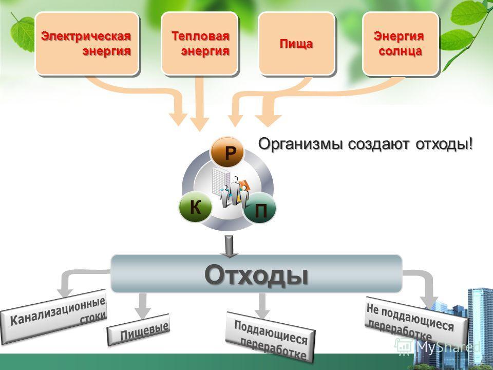 i Электрическая энергия энергияЭлектрическая Тепловая Тепловая ПищаПищаЭнергиясолнцаЭнергиясолнца Отходы Р П К Организмы создают отходы!