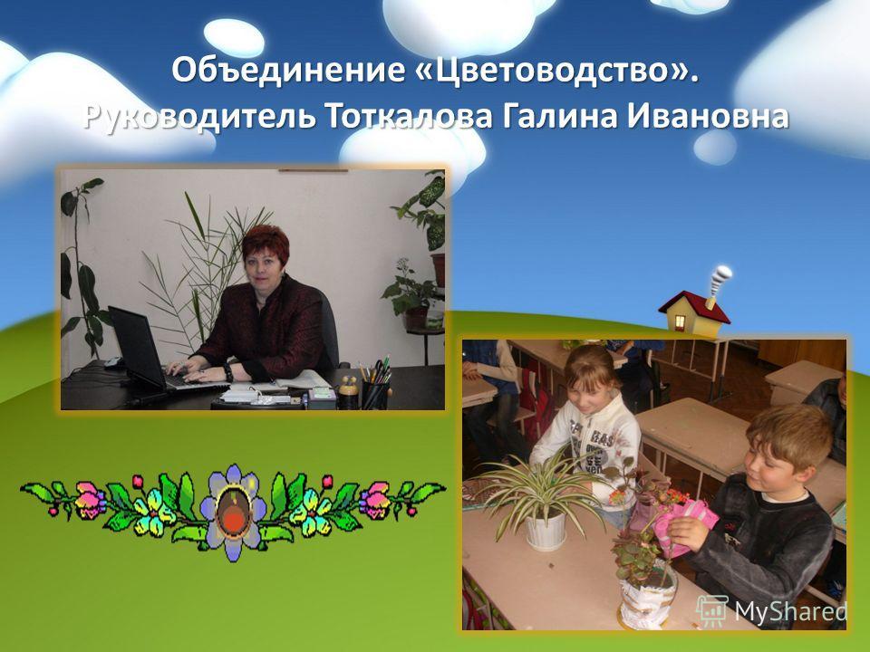 Объединение «Цветоводство». Руководитель Тоткалова Галина Ивановна