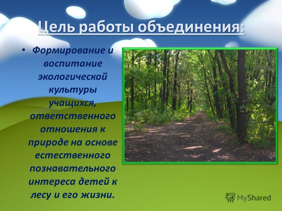 Цель работы объединения: Формирование и воспитание экологической культуры учащихся, ответственного отношения к природе на основе естественного познавательного интереса детей к лесу и его жизни.