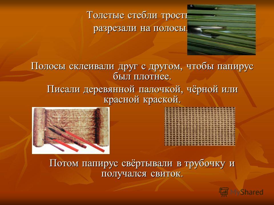 Толстые стебли тростника Толстые стебли тростника разрезали на полосы, разрезали на полосы, Полосы склеивали друг с другом, чтобы папирус был плотнее. Писали деревянной палочкой, чёрной или красной краской. Писали деревянной палочкой, чёрной или крас