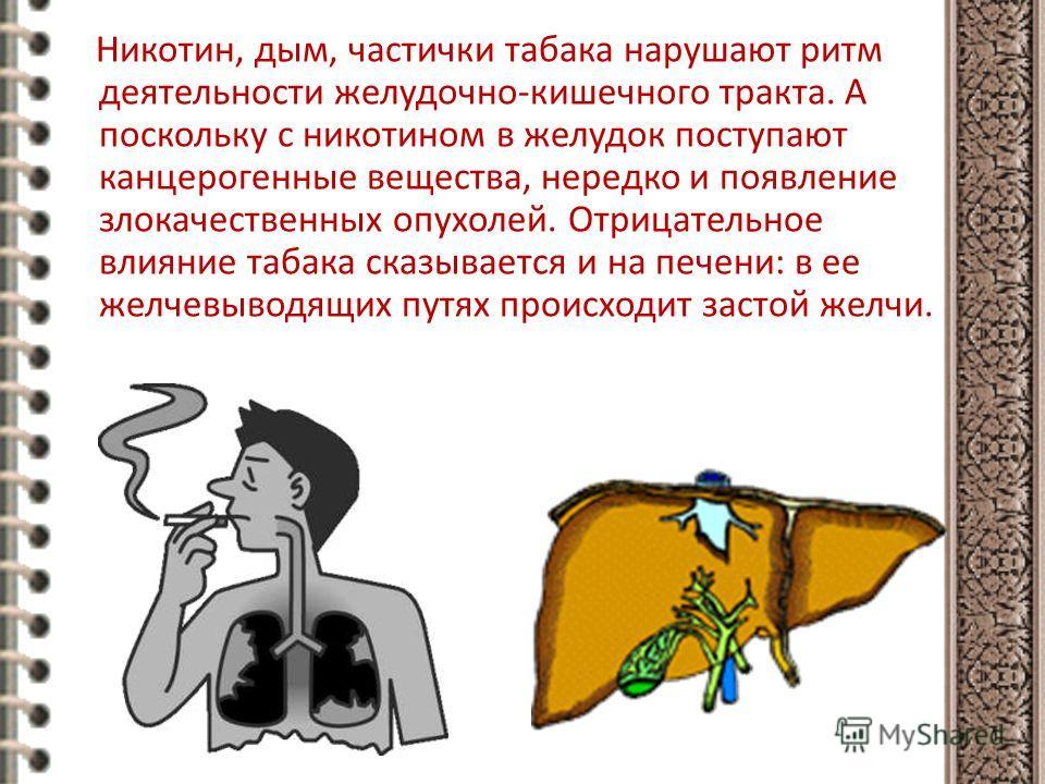 Никотин, дым, частички табака нарушают ритм деятельности желудочно-кишечного тракта. А поскольку с никотином в желудок поступают канцерогенные вещества, нередко и появление злокачественных опухолей. Отрицательное влияние табака сказывается и на печен