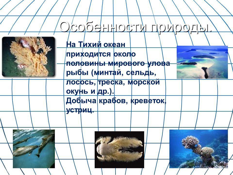 Особенности природы. На Тихий океан приходится около половины мирового улова рыбы (минтай, сельдь, лосось, треска, морской окунь и др.). Добыча крабов, креветок, устриц.