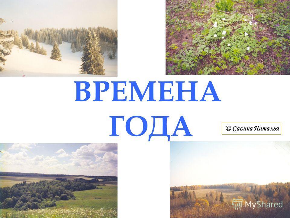 ВРЕМЕНА ГОДА © Савина Наталья