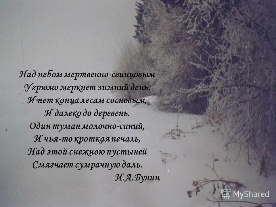 Над небом мертвенно-свинцовым Угрюмо меркнет зимний день, И нет конца лесам сосновым, И далеко до деревень. Один туман молочно-синий, И чья-то кроткая печаль, Над этой снежною пустыней Смягчает сумрачную даль. И.А.Бунин