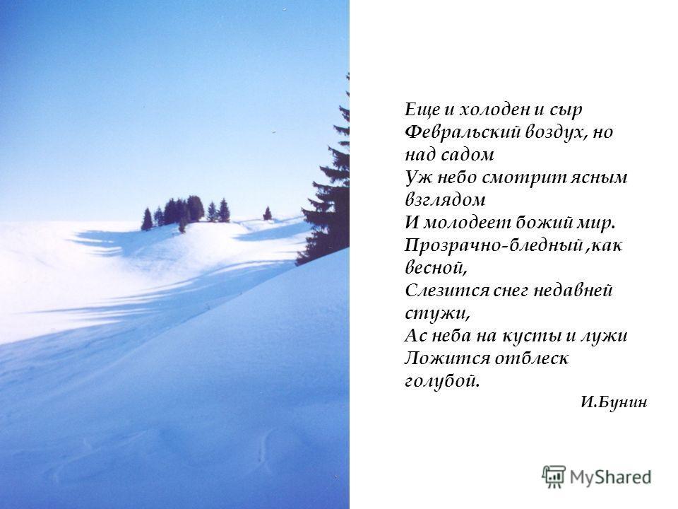 Еще и холоден и сыр Февральский воздух, но над садом Уж небо смотрит ясным взглядом И молодеет божий мир. Прозрачно-бледный,как весной, Слезится снег недавней стужи, Ас неба на кусты и лужи Ложится отблеск голубой. И.Бунин