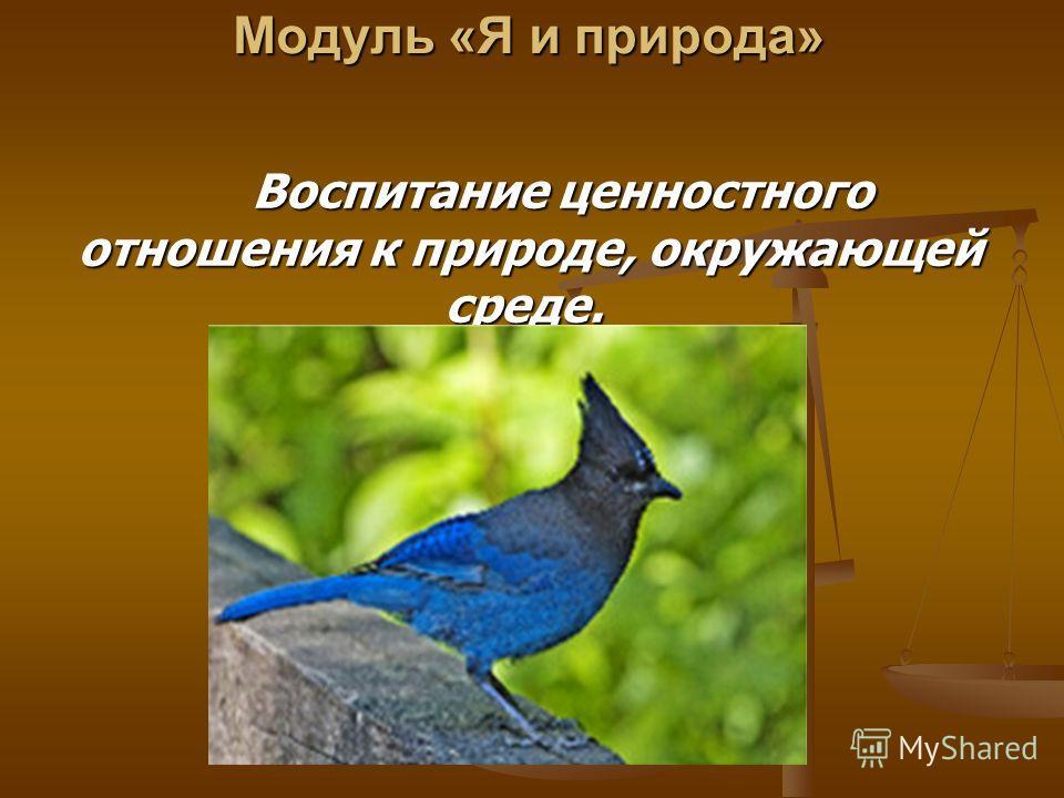 Модуль «Я и природа» Модуль «Я и природа» Воспитание ценностного отношения к природе, окружающей среде. Воспитание ценностного отношения к природе, окружающей среде.