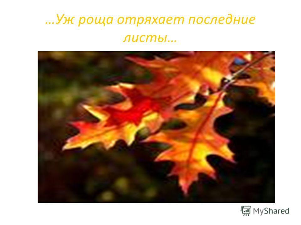 …Уж роща отряхает последние листы…