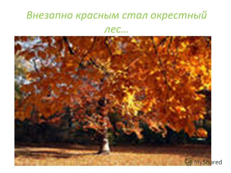 Внезапно красным стал окрестный лес…