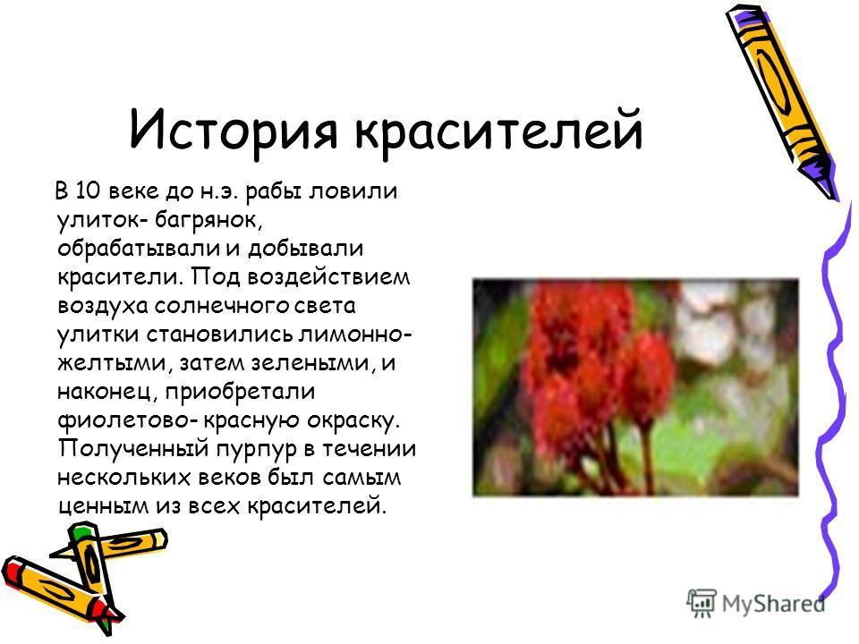 История красителей В 10 веке до н.э. рабы ловили улиток- багрянок, обрабатывали и добывали красители. Под воздействием воздуха солнечного света улитки становились лимонно- желтыми, затем зелеными, и наконец, приобретали фиолетово- красную окраску. По