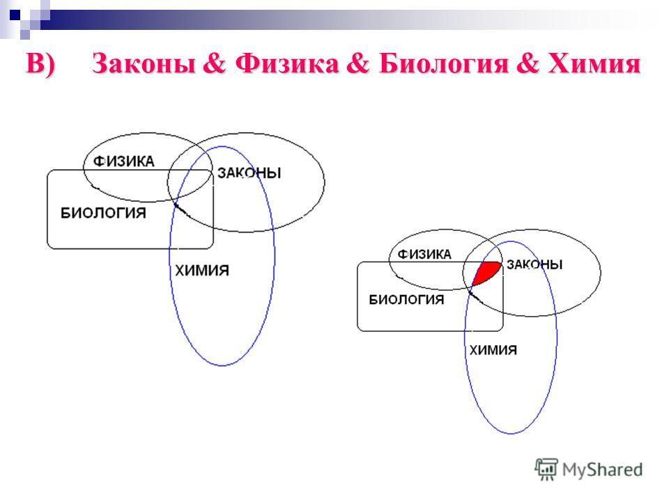 В)Законы & Физика & Биология & Химия