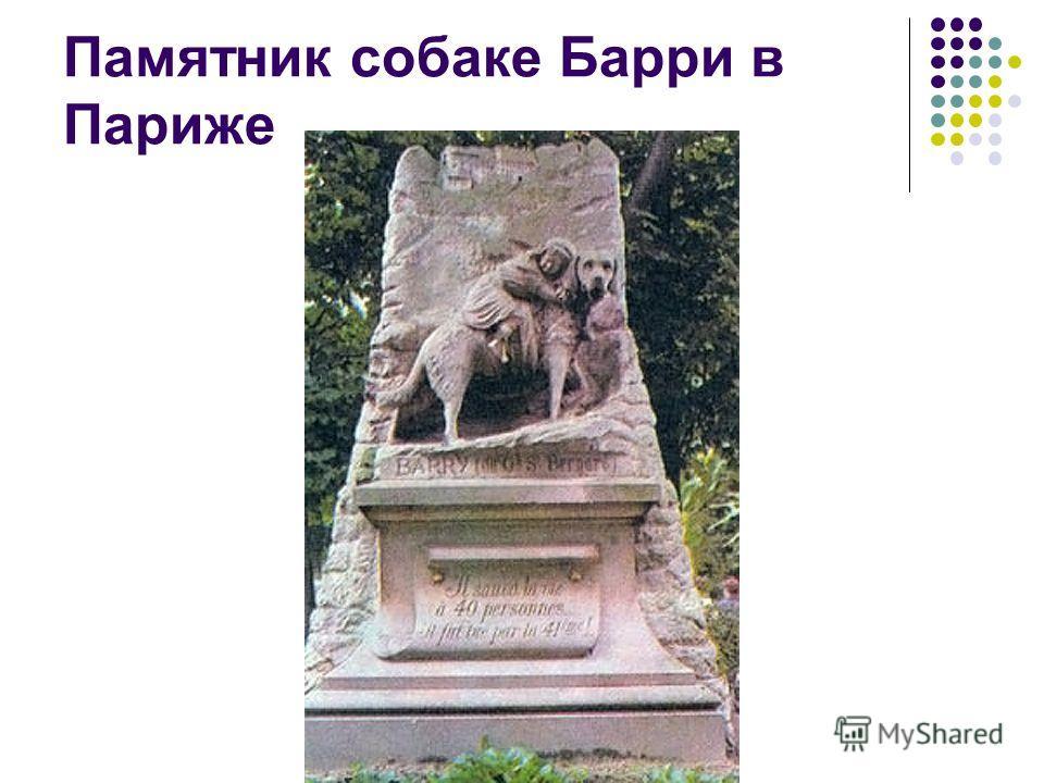 Памятник собаке Барри в Париже