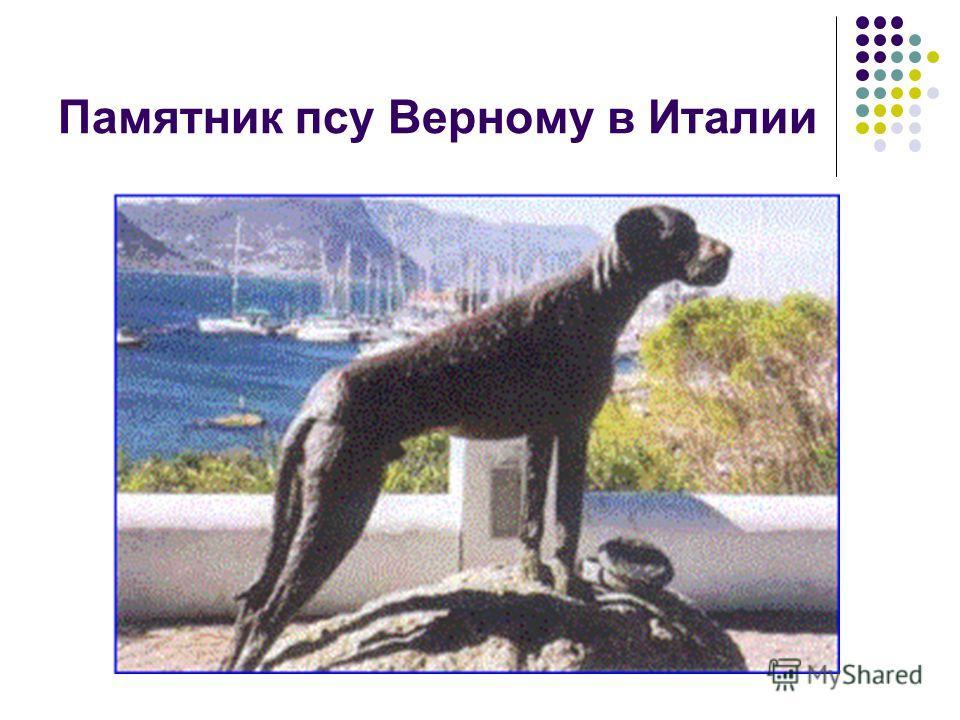 Памятник псу Верному в Италии