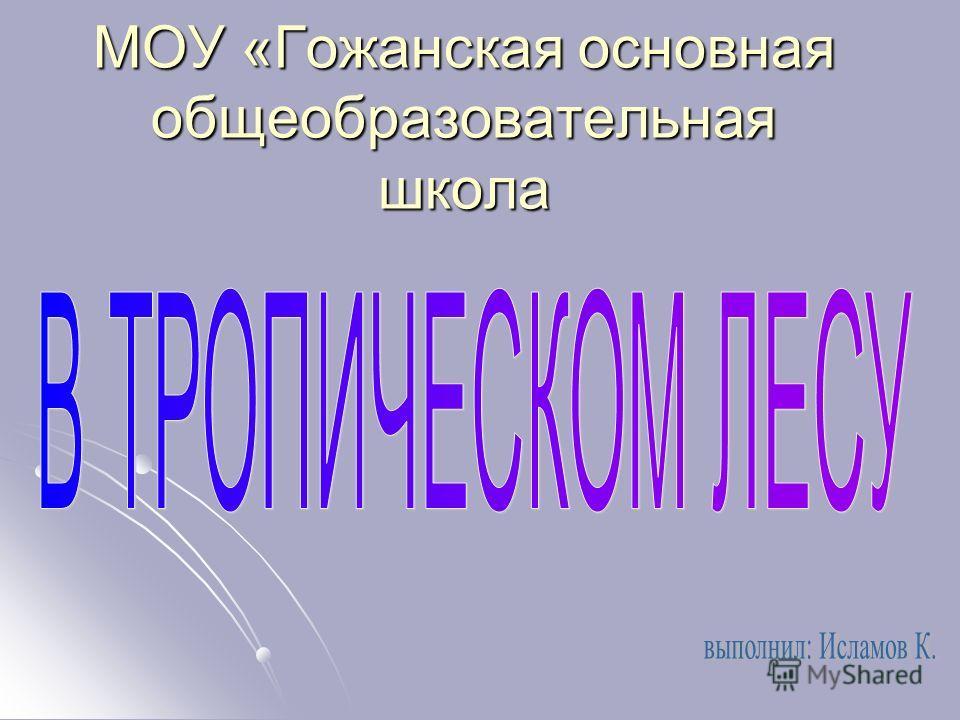 МОУ «Гожанская основная общеобразовательная школа