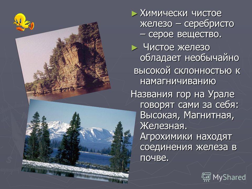 Химически чистое железо – серебристо – серое вещество. Чистое железо обладает необычайно высокой склонностью к намагничиванию Названия гор на Урале говорят сами за себя: Высокая, Магнитная, Железная. Агрохимики находят соединения железа в почве.