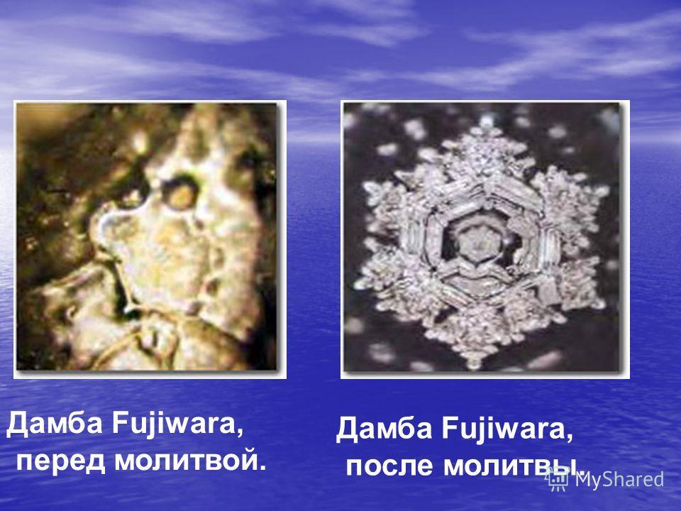 Дамба Fujiwara, перед молитвой. Дамба Fujiwara, после молитвы.