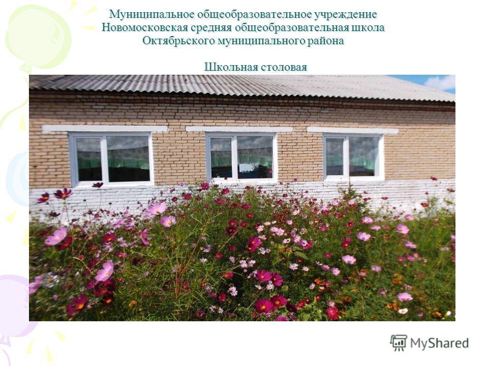 Муниципальное общеобразовательное учреждение Новомосковская средняя общеобразовательная школа Октябрьского муниципального района Школьная столовая
