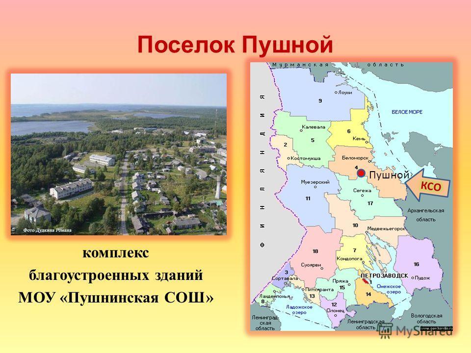 Поселок Пушной комплекс благоустроенных зданий МОУ «Пушнинская СОШ» Пушной