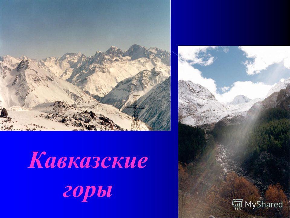 Кавказские горы протянулись на материке Евразия вдоль южной границы Русской равнины. В пределах России располагается только Предкавказье и северные склоны Большого Кавказа. Предкавказье охватывает обширную территорию к югу от Русской равнины между Че