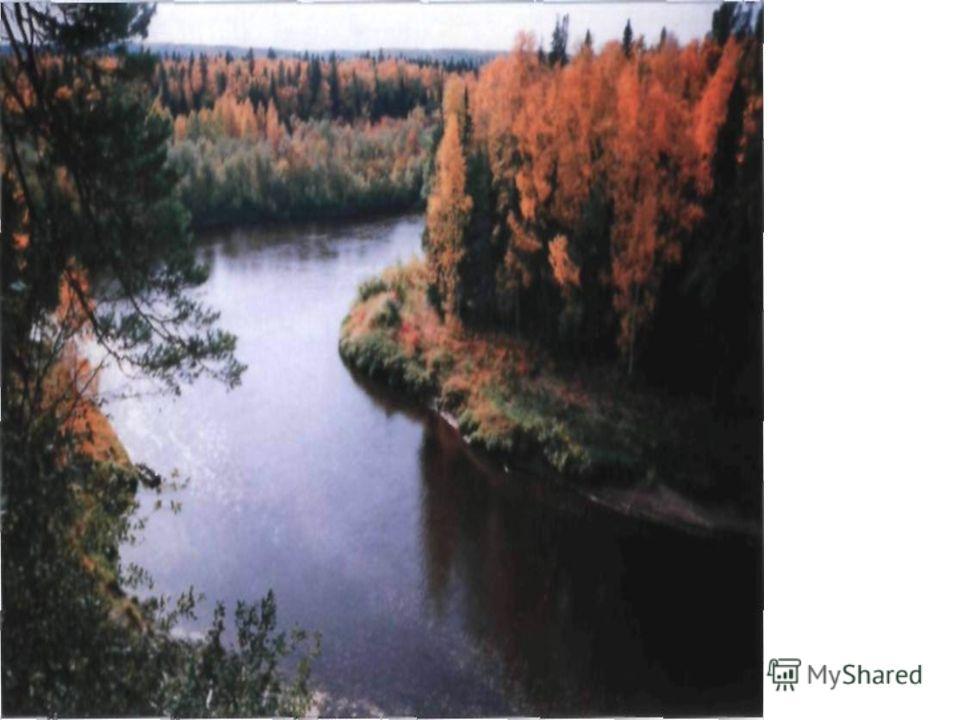 Река Малая Сосьва в центре заповедника. Фотограф А.М. Васин.