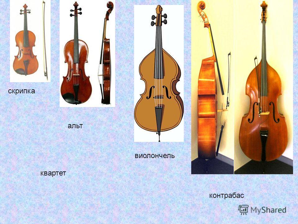 скрипка альт контрабас виолончель квартет